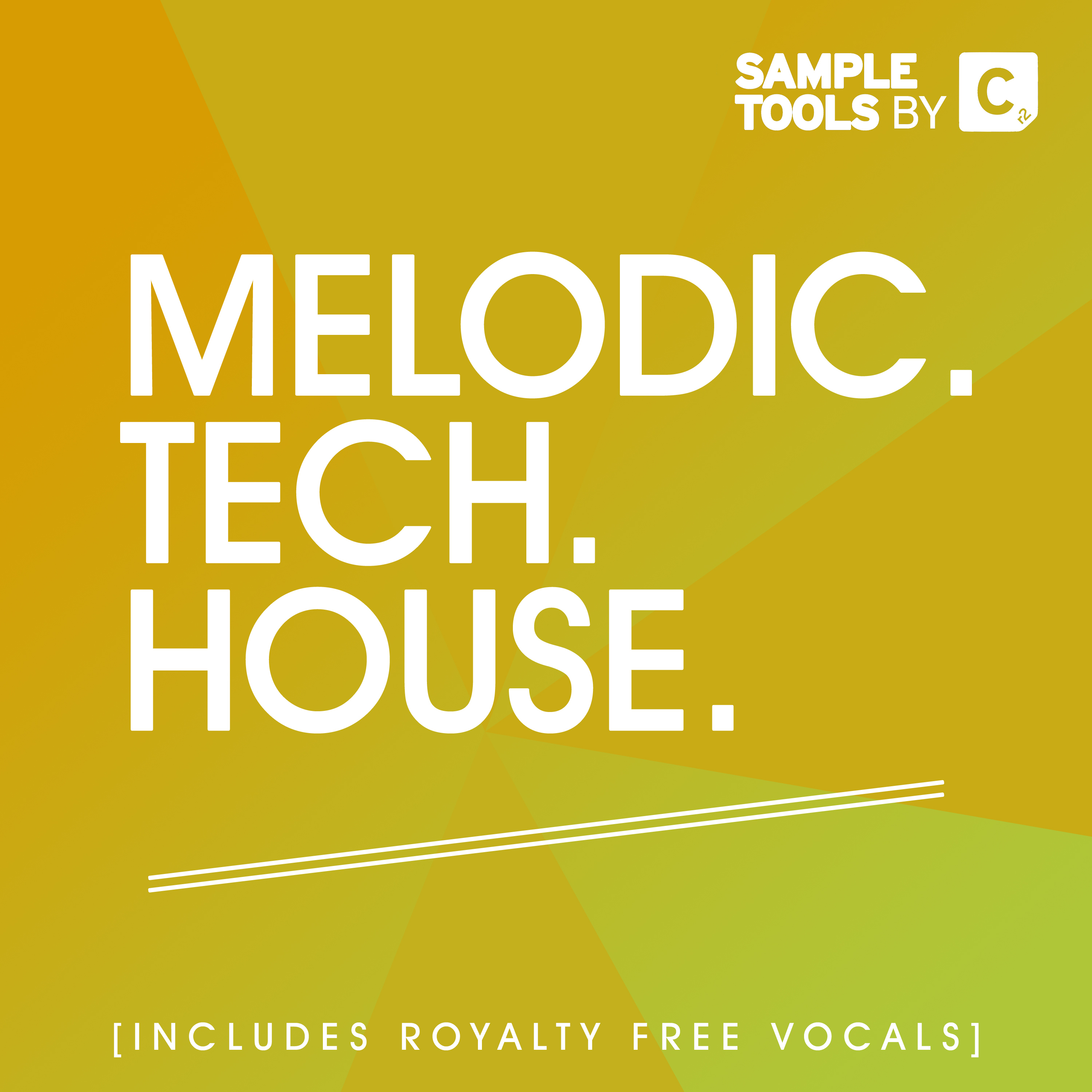 Melodic Tech House Artwork